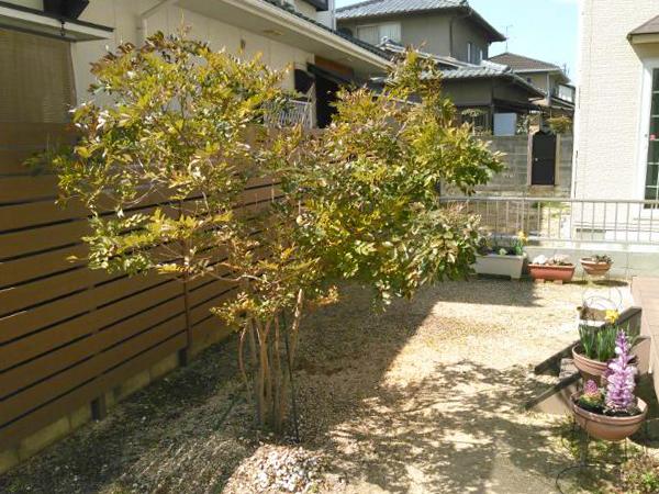 使い道に困ってたお庭、雑草に悩まされるシーズン前に綺麗にリフォームしたプライベートガーデン。